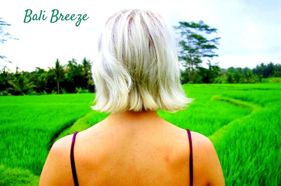 rice fields in ubud bali white hair